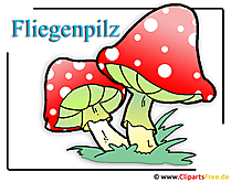Fliegenpilz Bild Clipart free