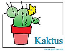 Kaktus Clipart Bild free
