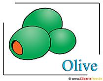 Oliven Bild-Clipart free