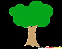 PNG Clipart Baum