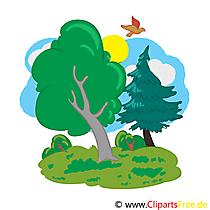 Wald Cartoon, Bild, Illustration, Clip Art