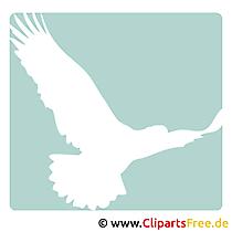 Adler Clipart gratis