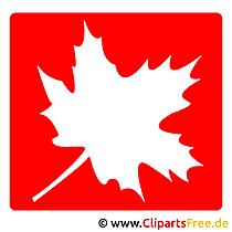 カエデの葉のイメージクリップアート