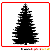 Dennenboom clipart