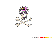 Schedel Clipart