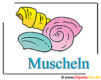 Muscheln Cliparts free