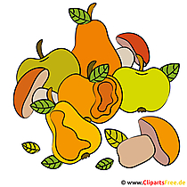 Oogst clipart