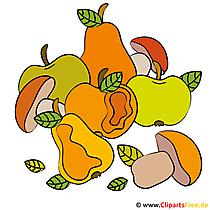 Harvest clipart