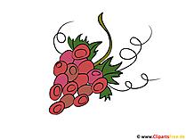 Wijnfestivalfoto's met druiven