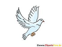 Bilder Pfingsten mit Tauben, Vögeln