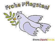 Pfingsten Taube