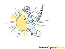 Pfingsten Taube und Sonne