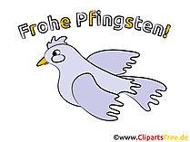 Taube Clipart - Bilder zu Pfingsten