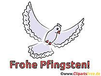 Taube Karte zu Pfingsten