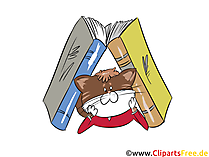 Bücher, Kater, Katze, Bibliothek Clipart, Bild, Grafik
