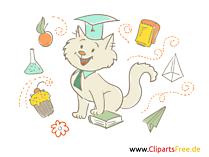 Lustige Bilder für Schule und Kindergarten - Kater