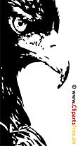 イーグルクリップアート、画像、イラスト