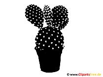 Clipart Kaktus