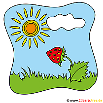 Erdbeere Clipart - Sommer Cliparts free