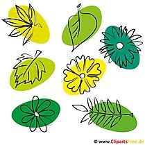 Kostenlose Bilder zum Sommer - Blaetter, Blumen, Pflanzen
