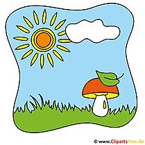 Pilz auf dem Feld Clipart - Kostenlose Bilder zum Sommer