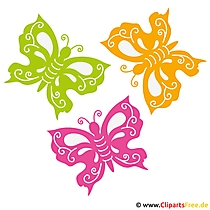 Schmetterlinge Bild - Sommer Bilder gratis