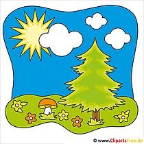 Tannenbaum Clip Art - Sommer Cliparts free