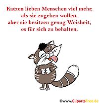 Katzen Sprüche und Bilder witzig