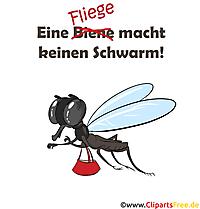 Lustige Sprüche, Redewendungen - Eine Biene macht keinen Schwarm