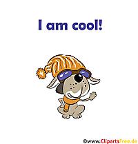Witzige Bilder mit Sprüchen - I am Cool