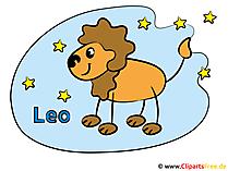 Loewe Sternzeichen - Chinesisches Horoskop