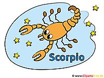 Zodiac Scorpio - afbeeldingen Astrologie