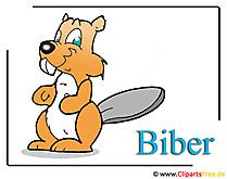 Beaver Clipart gratis