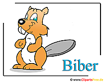 Biber Clipart free