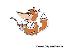 Plaatjes dieren vrij - vos