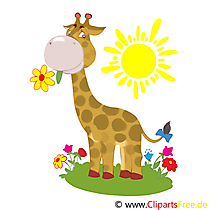 Cartoon giraffe illustratie, illustraties, eCard, dierentuin