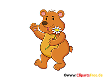Cartoonbär Clipart, Grafik, Illustration, Bild gratis
