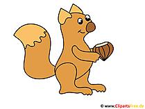 Cartoon eekhoorn met moer