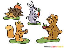 漫画の動物の写真