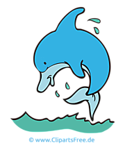 Dolphin clipart, picture, cartoon, graphic gratis