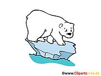 Polar bear afbeelding, clipart, tekening in hoge resolutie