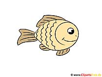 魚の写真が面白い