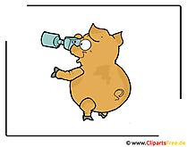Foto Clipart gratis - piggy foto