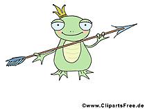 Frosch Bild - Lustige Bilder Tier
