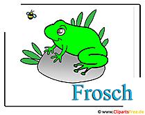 Frog Cliparts gratis