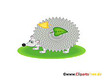 Igel Clipart, Grafik, Illustration, Bild gratis
