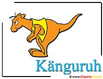 Kangaroo afbeelding - Clipart Zoo