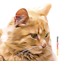 Chat Clipart, Illustration, Image