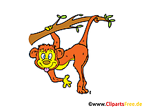 Monkey Clip Art, Image, Comic, Cartoon free