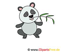 Panda Bild, Clip Art, Image, Grafik, Illustration gratis